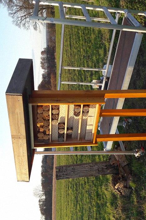 Aufbau unseres Insektenhotels auf der Insektenoase in Hünxe