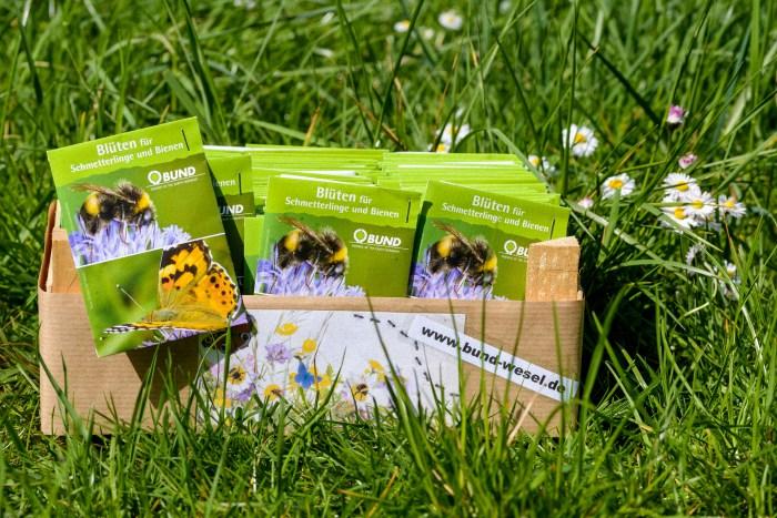 BUND Wildblumen-Saatgutmischung - 1 Tütchen Wildssamenmischung reicht für 1-2 Quadratmeter